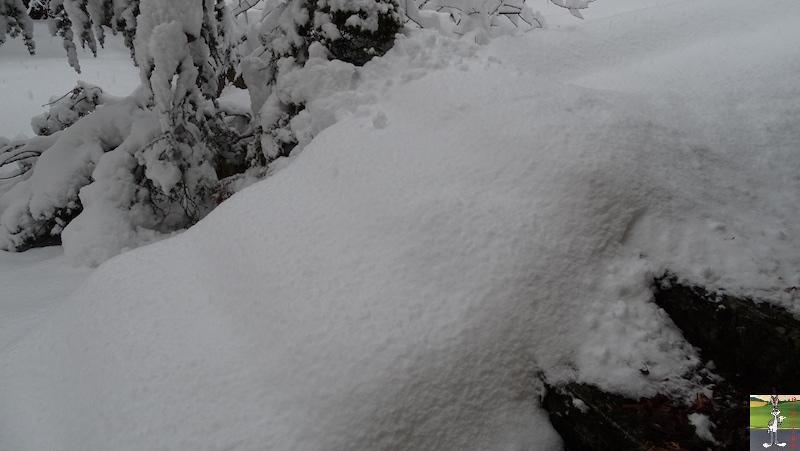 2019-01-13 : La neige tombe abondamment à La Mainmorte (39) 2019-01-13_neige_05