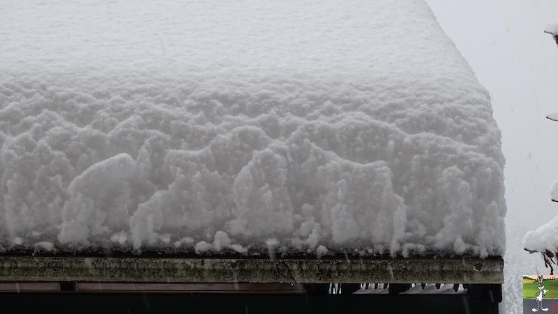 2019-01-13 : La neige tombe abondamment à La Mainmorte (39) 2019-01-13_neige_08