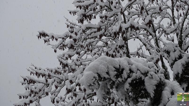 2019-01-13 : La neige tombe abondamment à La Mainmorte (39) 2019-01-13_neige_12