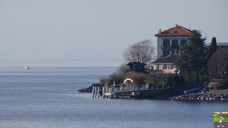 2019-01-19 : Sur les bords du Lac Léman (VD, CH) 2019-01-19_leman_07