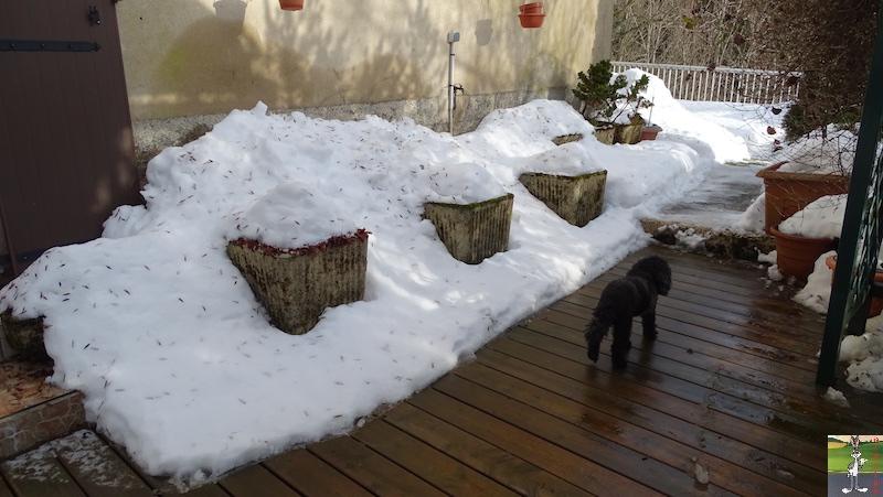 2019-02-02 : La neige est toujours là et bien là à La Mainmorte (39) 2019-02-02_neige_05