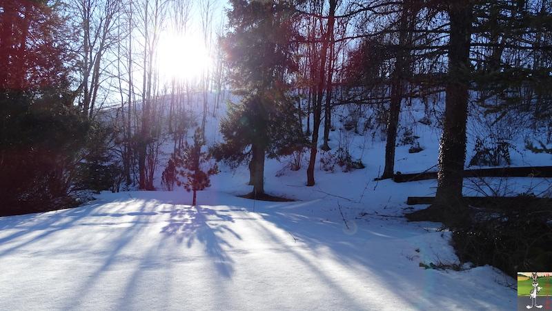 2019-02-15 : Il y a encore de la neige mais elle fond très vite avec le beau soleil à La Mainmorte (39) 2019-02-15_soleil_neige_08