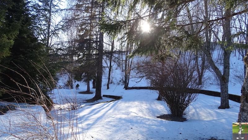 2019-02-15 : Il y a encore de la neige mais elle fond très vite avec le beau soleil à La Mainmorte (39) 2019-02-15_soleil_neige_10