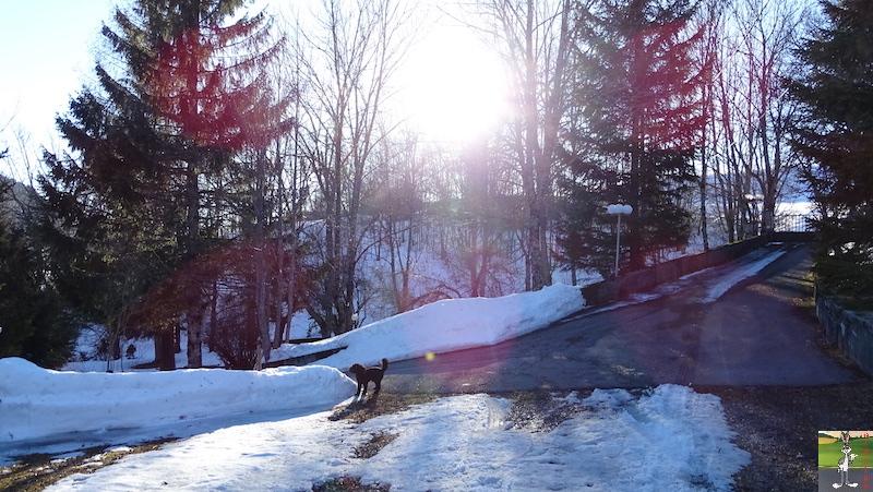 2019-02-15 : Il y a encore de la neige mais elle fond très vite avec le beau soleil à La Mainmorte (39) 2019-02-15_soleil_neige_13