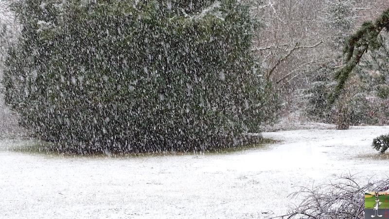 2019-03-17 : Rebelotte, retour de la neige à La Mainmorte (39) 2019-03-17_re_neige_03