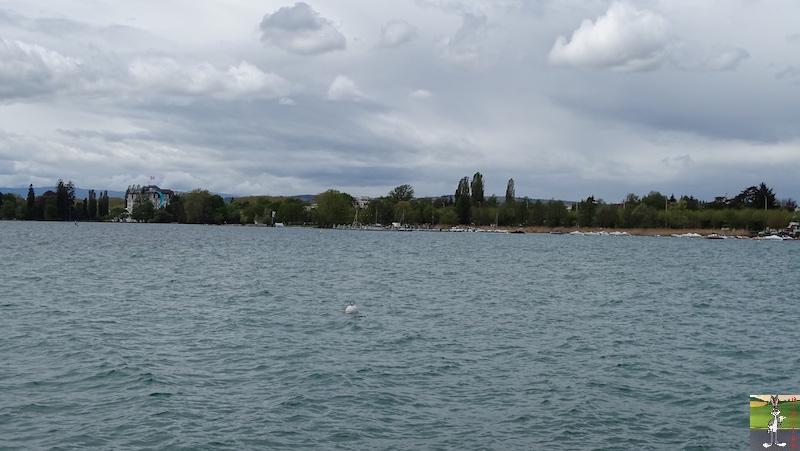 2019-04-27 : Balade au bord du Lac d'Annecy (74) 2019-04-27_lac_annecy_15