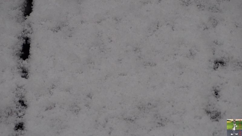 2019-05-04 : Re re re re re retour de la neige à La Mainmorte (39) 2019-05-04_neige_03