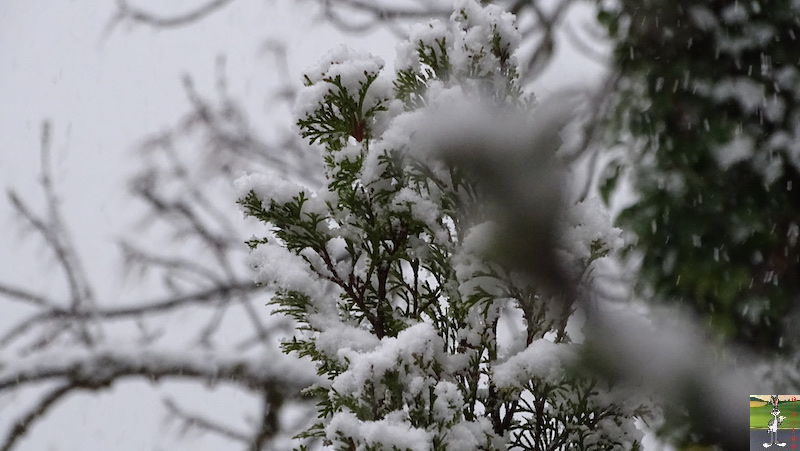 2019-05-04 : Re re re re re retour de la neige à La Mainmorte (39) 2019-05-04_neige_06