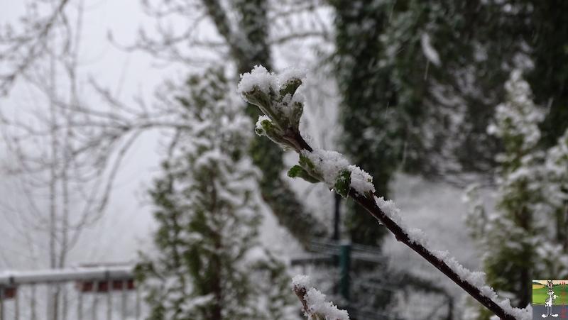 2019-05-04 : Re re re re re retour de la neige à La Mainmorte (39) 2019-05-04_neige_07