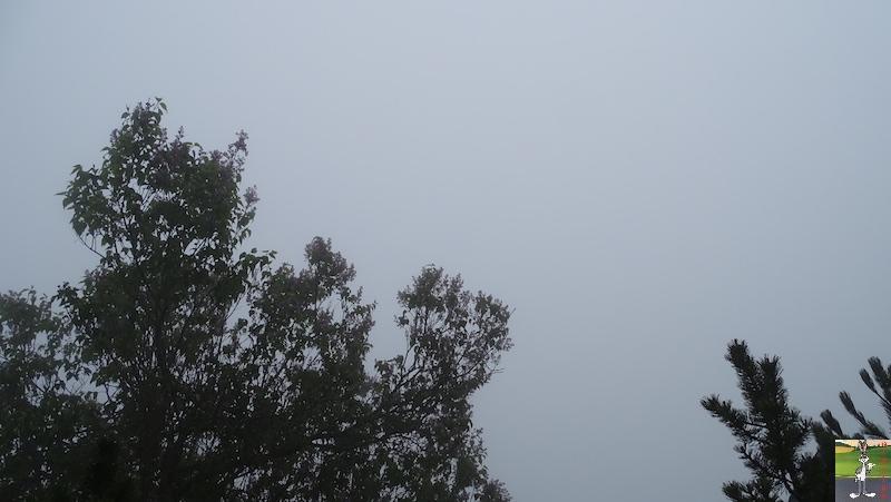 2019-05-19 : Journée automnale avec du brouillard à La Mainmorte (39) 2019-05-19_brouillard_03