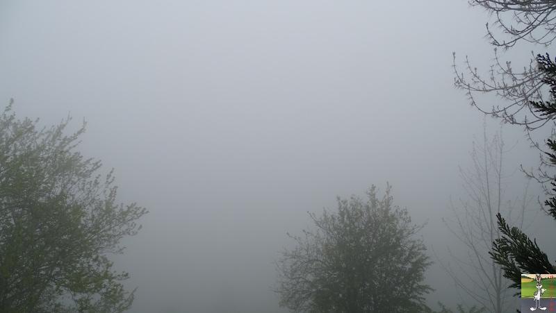 2019-05-19 : Journée automnale avec du brouillard à La Mainmorte (39) 2019-05-19_brouillard_04