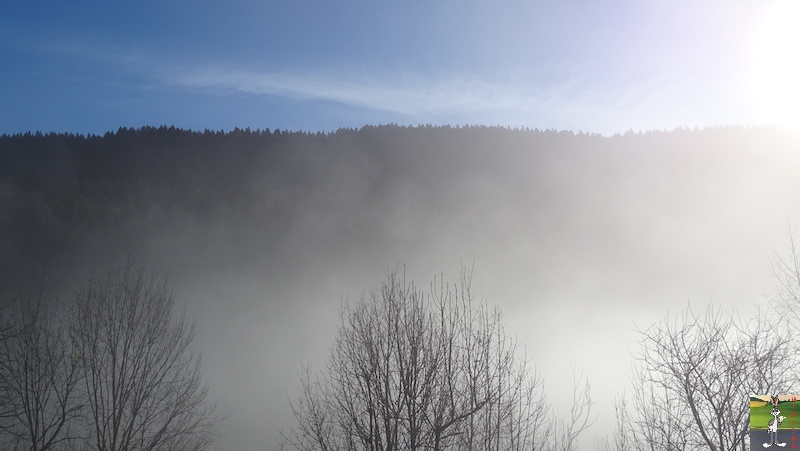 [39] - 2020-01-11 : Balade entre soleil et brouillard à La Mainmorte 2020-01-11_Mainmorte_06