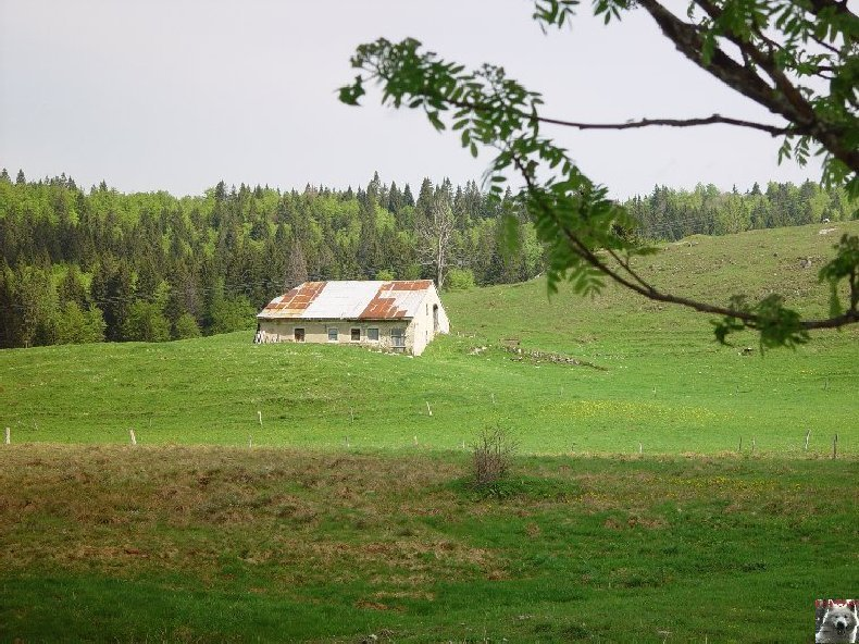 La Ferme du Haut-Jura 0010