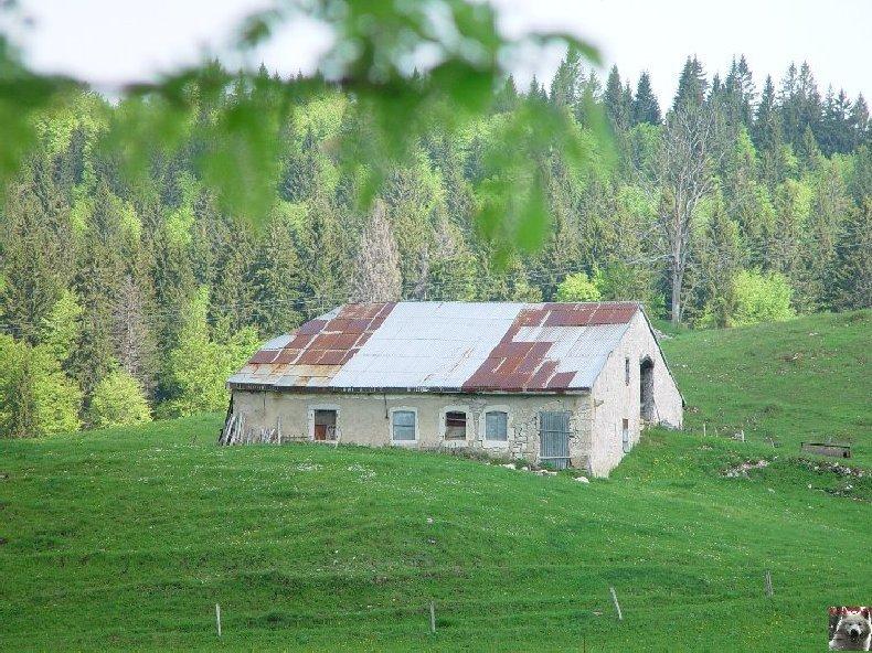 La Ferme du Haut-Jura 0011