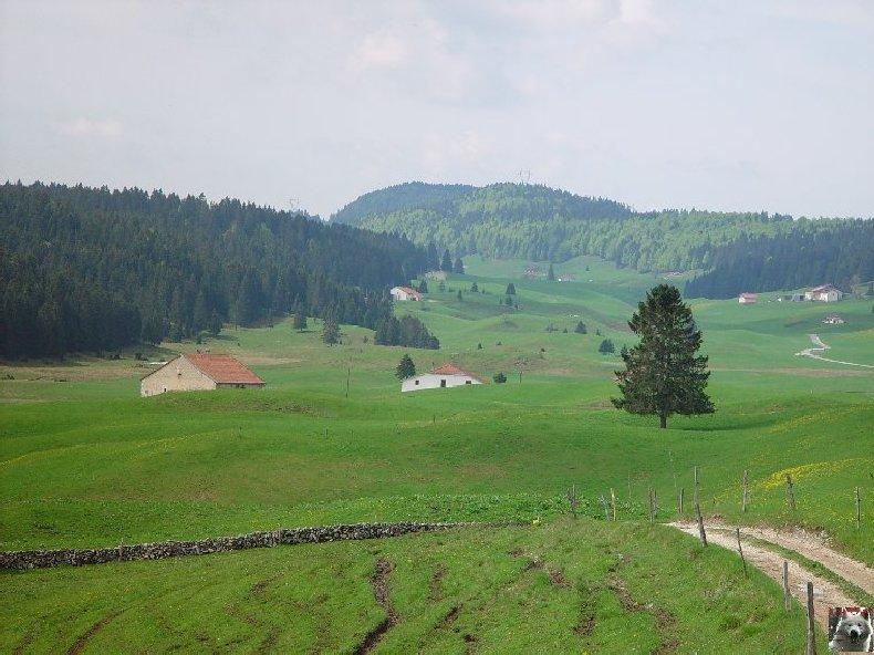 La Ferme du Haut-Jura 0014
