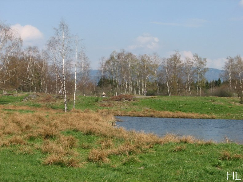 Hélène nous rapporte quelques images de Haute-Saône 0010