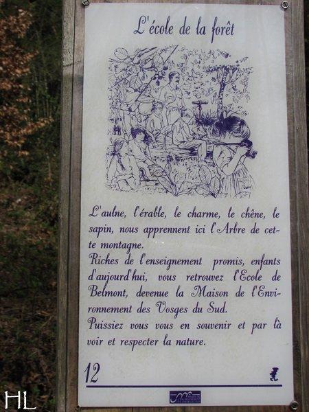 Hélène nous rapporte quelques images de Haute-Saône 0015