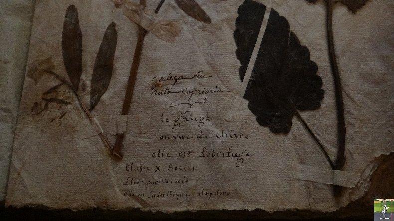 L'apothicairerie de l'Hôtel Dieu de Lons le Saunier- 7 mars 2014 025