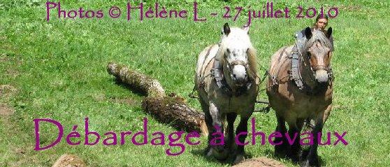 2010-07-27 : Débardage avec des chevaux - Hélène L. Logo