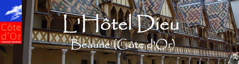Beaune (21) L'Hotel Dieu Logo1