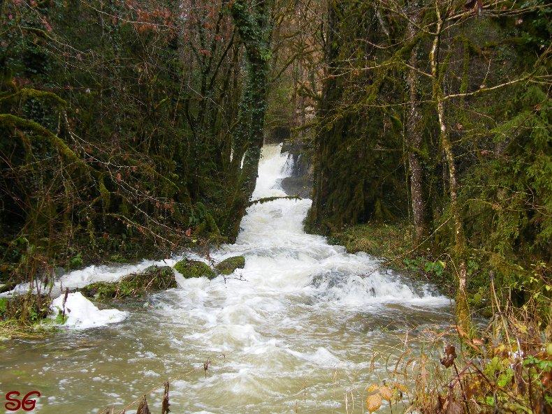 Les Monts de Bienne à l'Automne - Sandrine - novembre 2009 0001