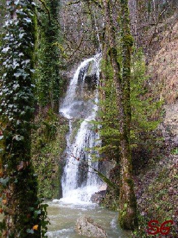 Les Monts de Bienne à l'Automne - Sandrine - novembre 2009 0003