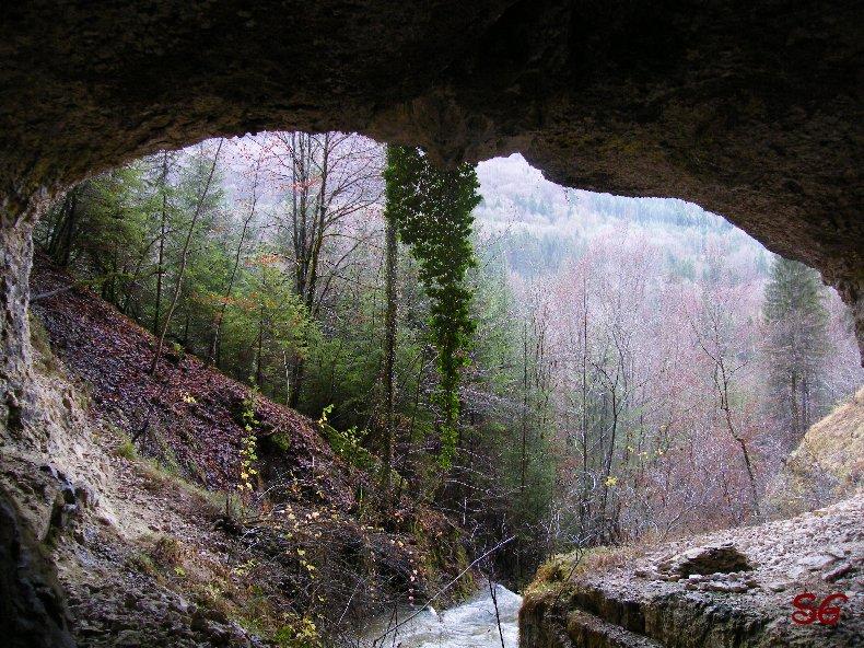 Les Monts de Bienne à l'Automne - Sandrine - novembre 2009 0005
