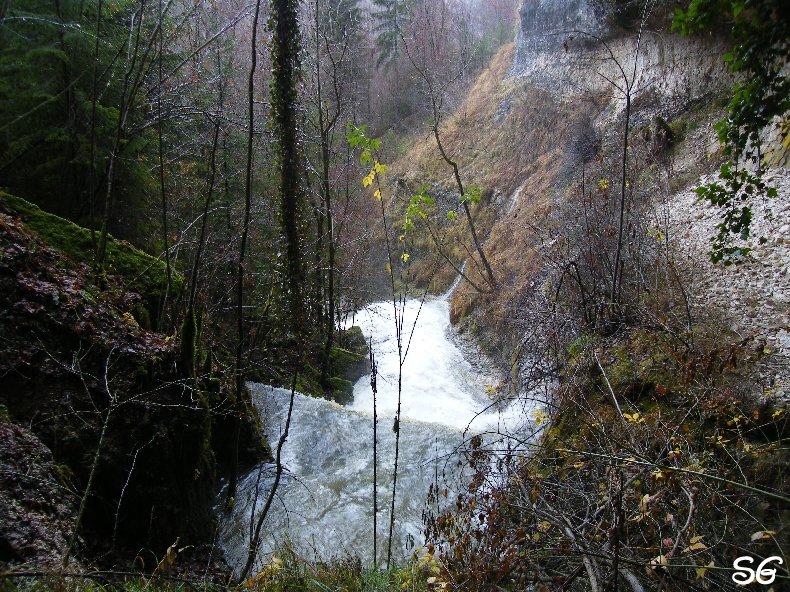 Les Monts de Bienne à l'Automne - Sandrine - novembre 2009 0006