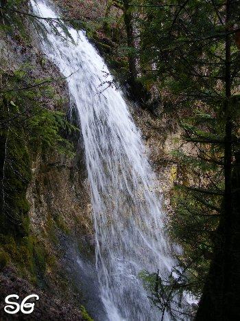 Les Monts de Bienne à l'Automne - Sandrine - novembre 2009 0008