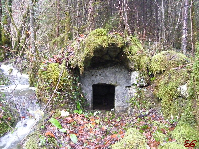 Les Monts de Bienne à l'Automne - Sandrine - novembre 2009 0013