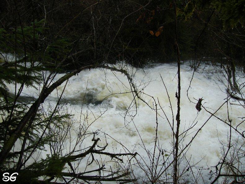Les Monts de Bienne à l'Automne - Sandrine - novembre 2009 0017