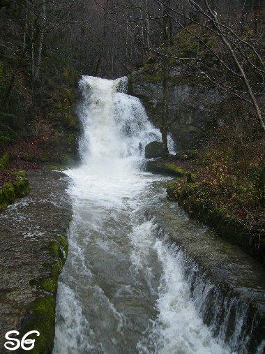 Les Monts de Bienne à l'Automne - Sandrine - novembre 2009 0020