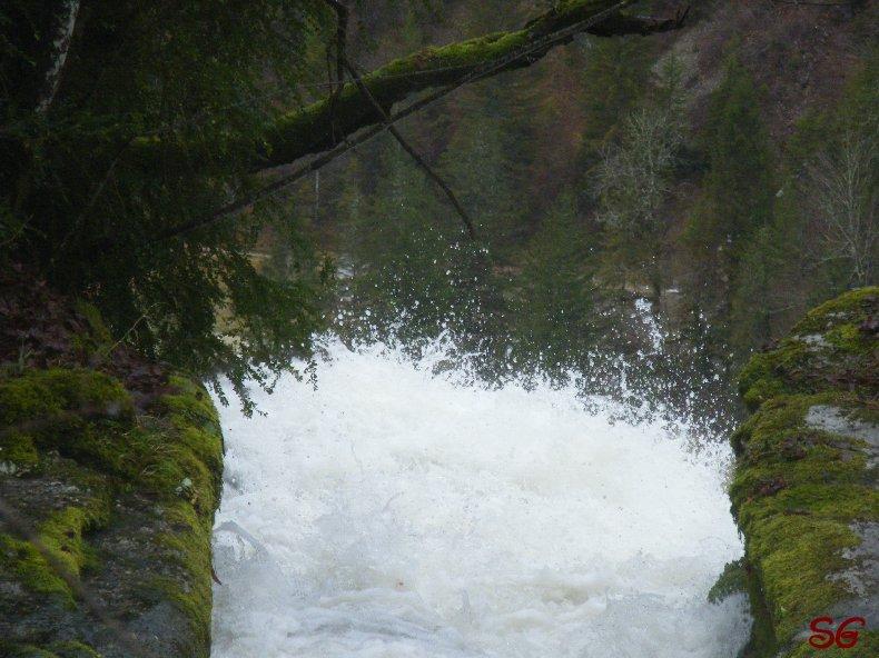 Les Monts de Bienne à l'Automne - Sandrine - novembre 2009 0021