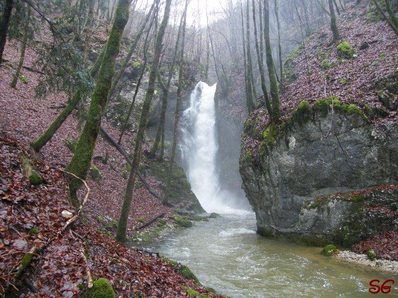 Les Monts de Bienne à l'Automne - Sandrine - novembre 2009 0022