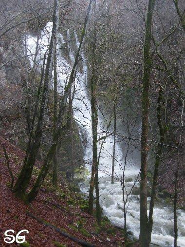 Les Monts de Bienne à l'Automne - Sandrine - novembre 2009 0023