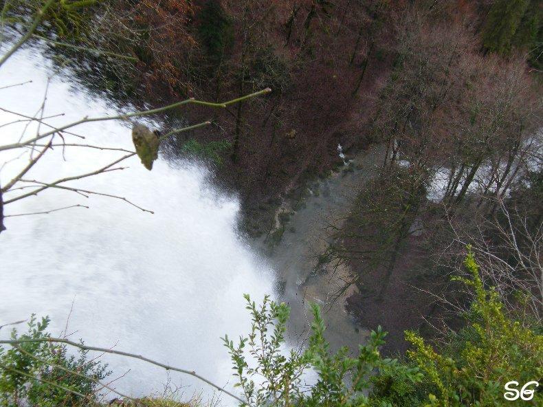 Les Monts de Bienne à l'Automne - Sandrine - novembre 2009 0024