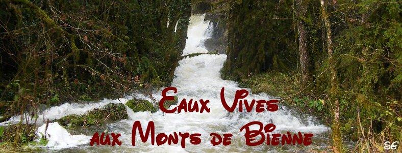Les Monts de Bienne à l'Automne - Sandrine - novembre 2009 Logo