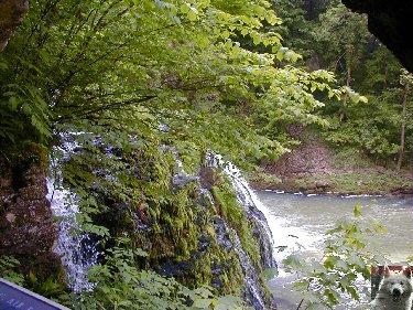 Diverses cascades Lison_0004