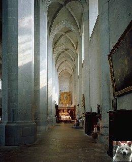 002 - St Claude (39) La cathédrale des Trois Apôtres (St Pierre, St Paul, St André) 0014