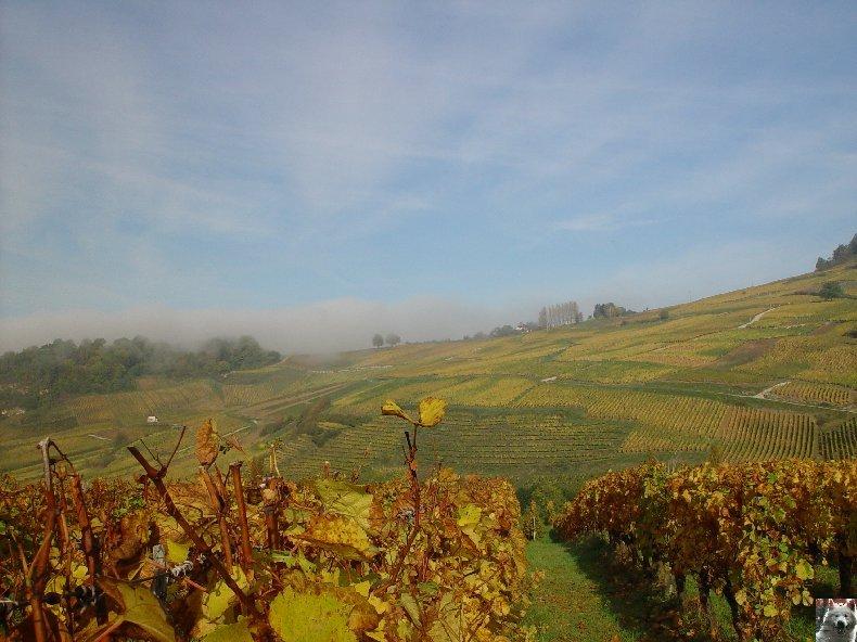 [39] : 20 octobre 2005 - Château-Chalon 0010