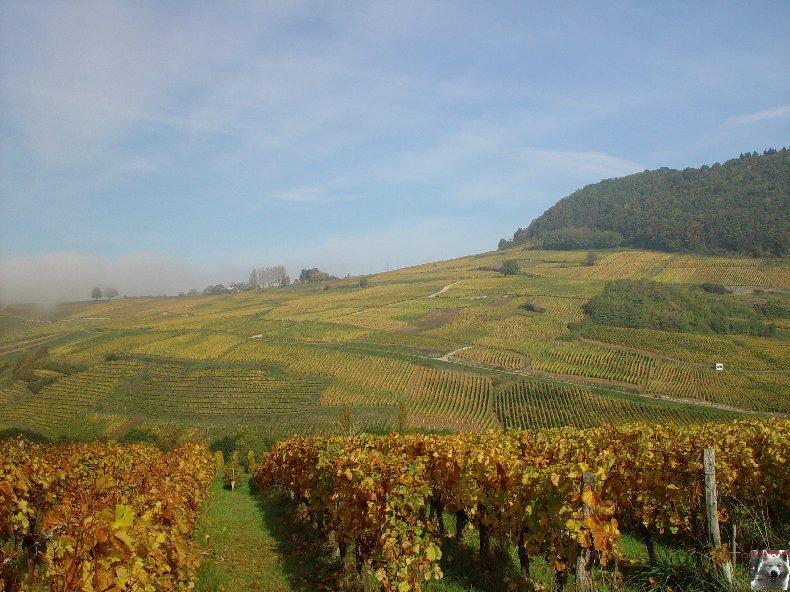 [39] : 20 octobre 2005 - Château-Chalon 0011