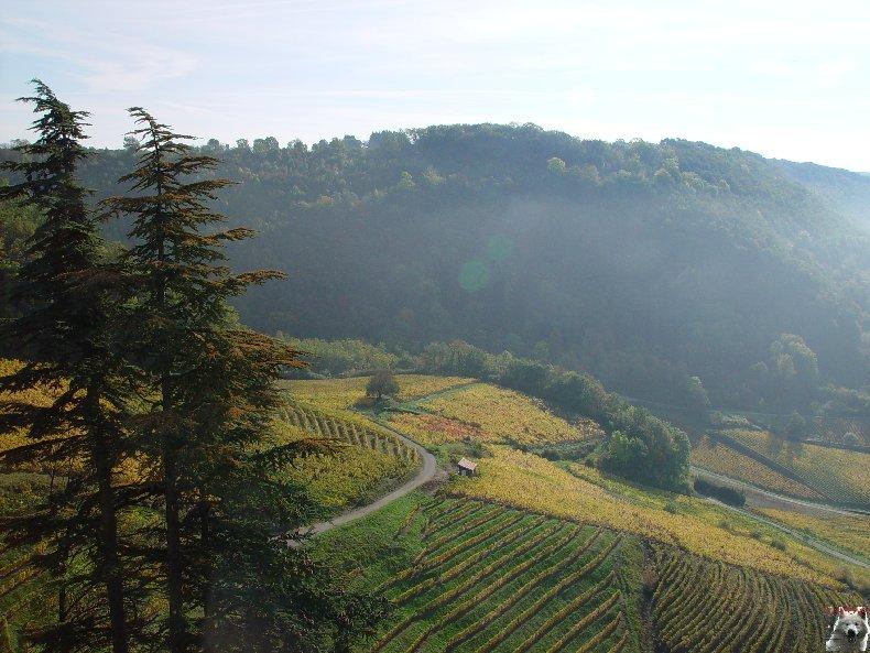 [39] : 20 octobre 2005 - Château-Chalon 0022