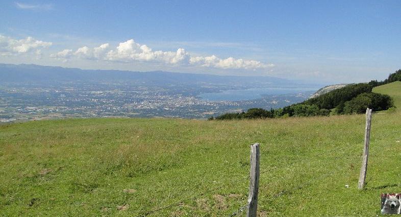 Depuis le Salève (74) Le Jura et Genève 0228