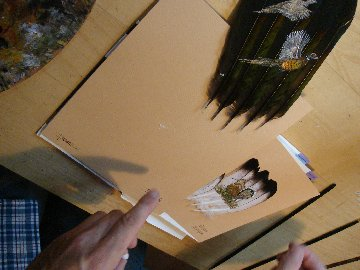 2006-06-06 : David Mayet - Peintre sur plumes. 0011