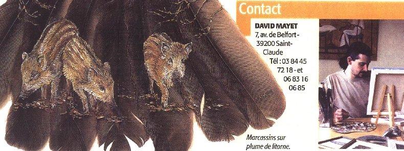 2006-06-06 : David Mayet - Peintre sur plumes. 0023