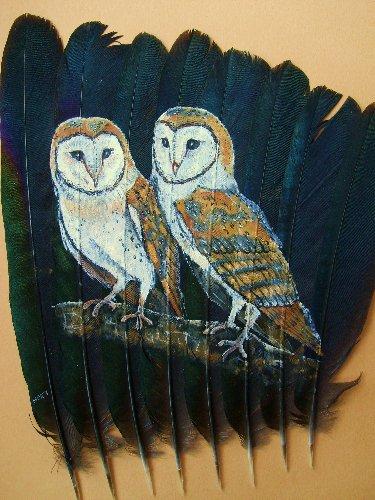 2006-06-06 : David Mayet - Peintre sur plumes. 0031