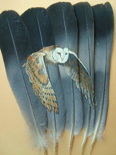 2006-06-06 : David Mayet - Peintre sur plumes. 0032