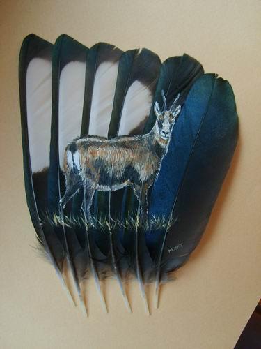 2006-06-06 : David Mayet - Peintre sur plumes. 0035