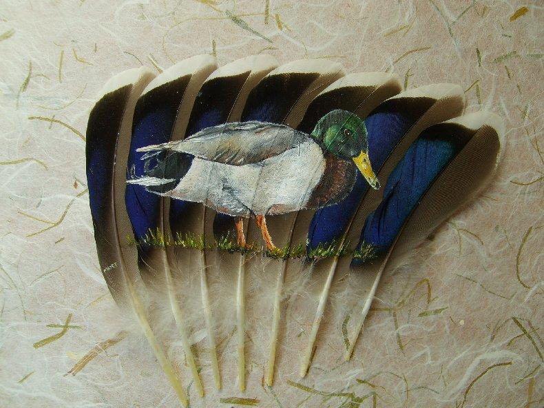 2006-06-06 : David Mayet - Peintre sur plumes. 9002