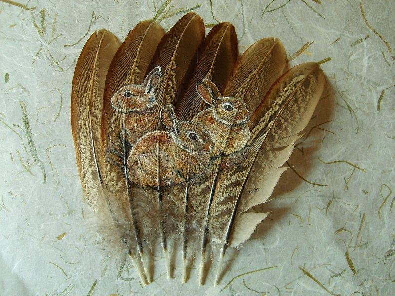 2006-06-06 : David Mayet - Peintre sur plumes. 9008